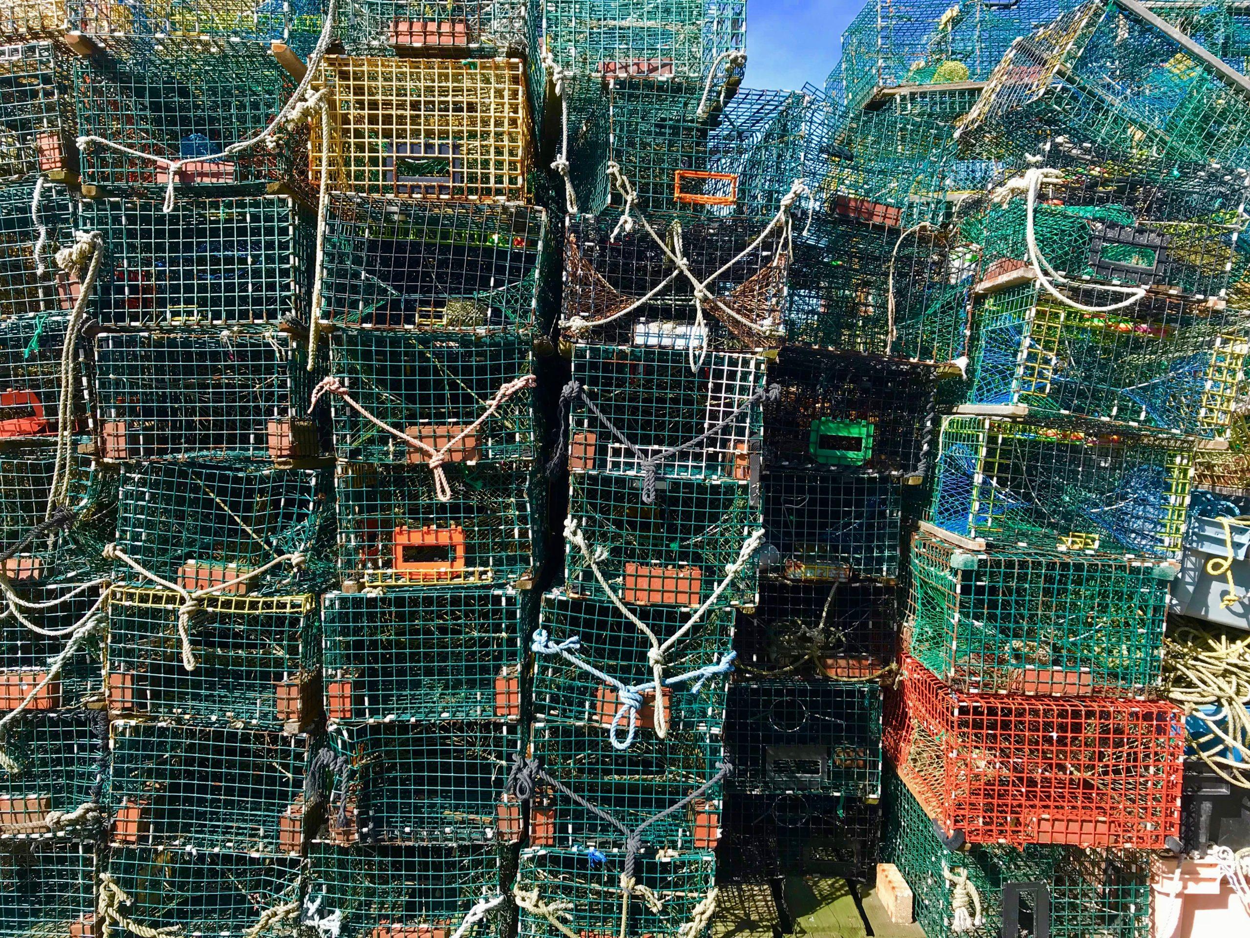 cages à homard portland