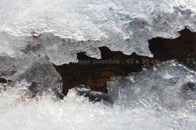 Milleglace. Quand la carapace craque, elle se reforme, couche après couche. Restent des lignes plus fragiles mais hérissées.