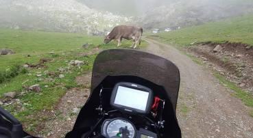 Pirineos 2016