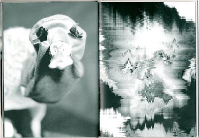 Un rêve de ver nu, Annette Messager, 2011