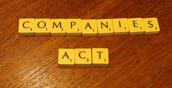 The companies (amendment) act, 1996