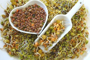 Sprouts a rich source of Nutrition