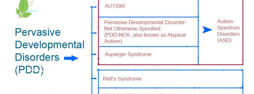Pervasiv Developmental Disorders