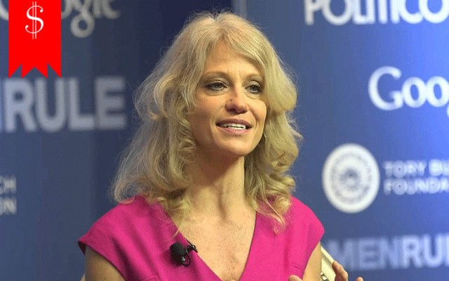 Image result for Kellyanne Conway Biography