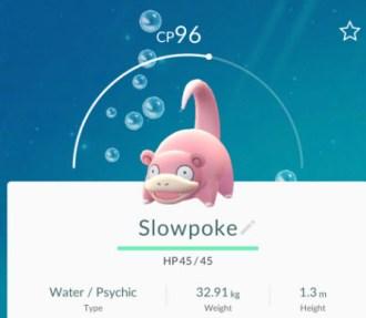 slowpokepokemongo
