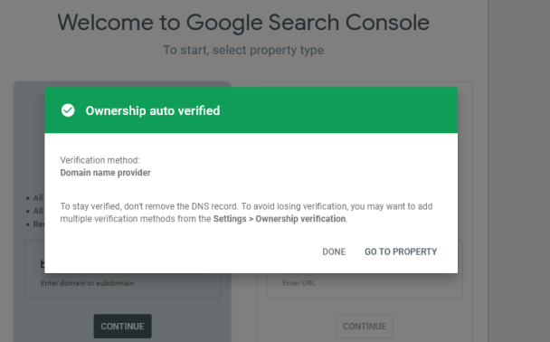 Ownership verification by Domain Name System