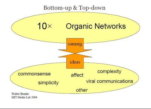 As redes sociais são tão orgânicas quanto a maturidade digital de quem as utiliza