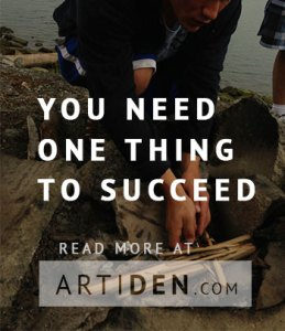 What Really Matters for Success