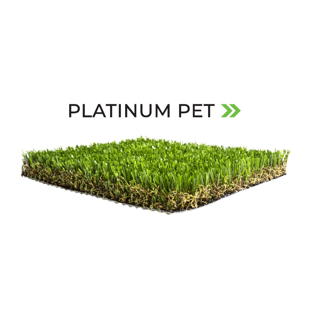 Artificial Turf Source Platinum Pet in Palm Desert