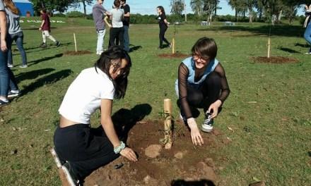 Se plantaron árboles en El Paseo 7 de Septiembre