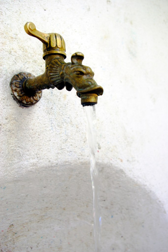 Dragon water faucet in Sienna. Photography by L.E. Paulson.