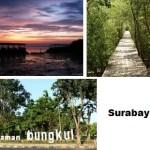 Nikmati Wisata Alam di Kota Surabaya