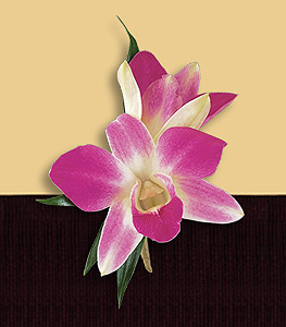 Double orchid boutonniere in purple.