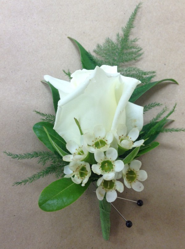 White_rose_bout