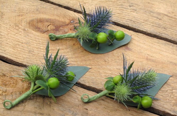 thistle_berry_bout