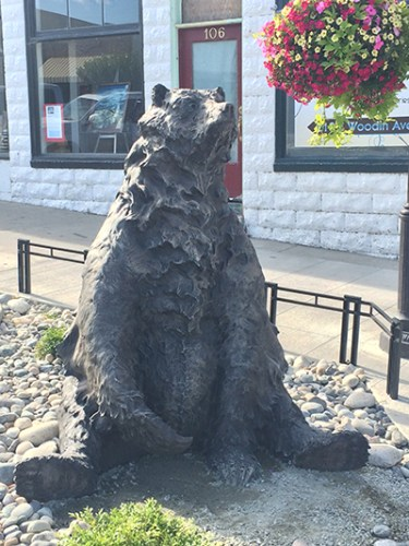 Seated grizzly bear