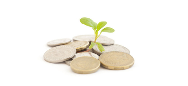 coins and a seedling
