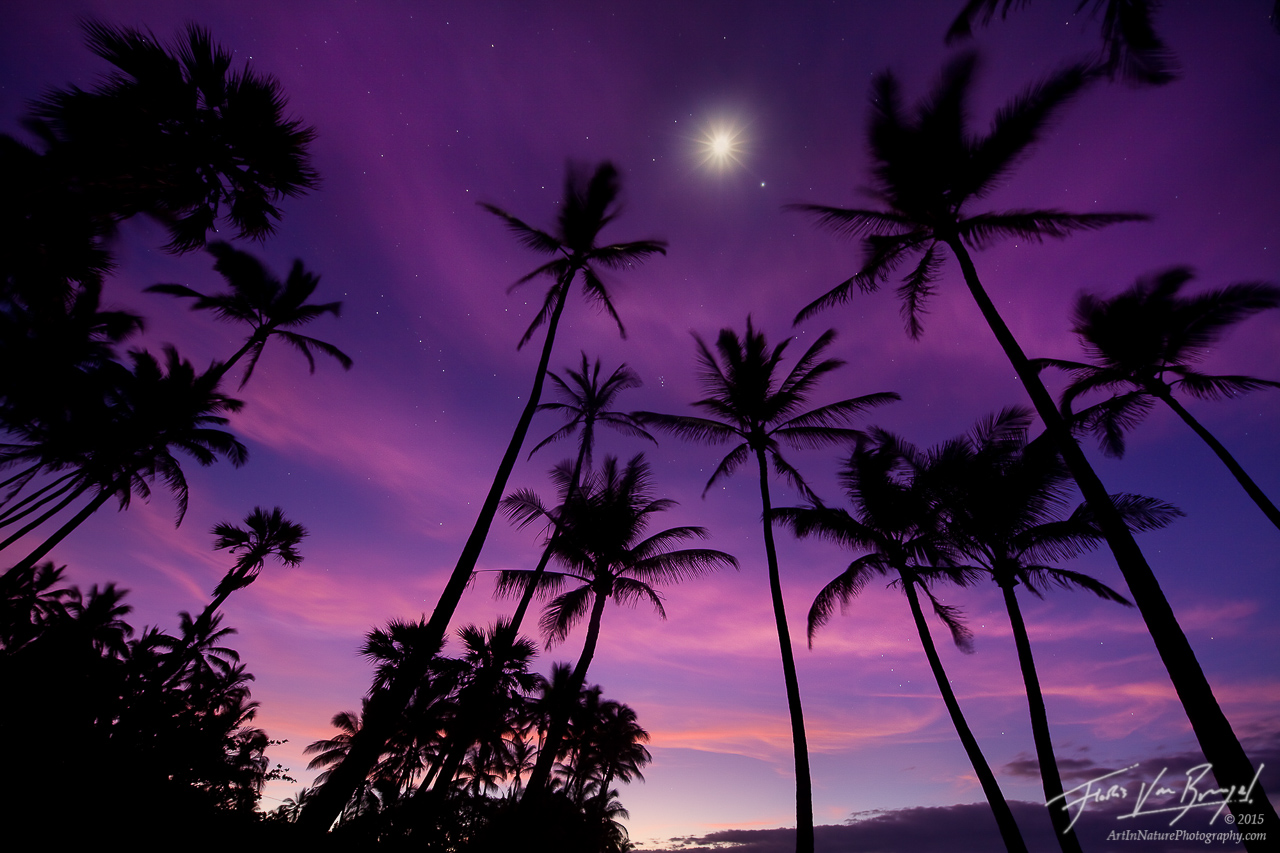 A Night In Paradise : Punalu'u, Hawaii : Art In Nature