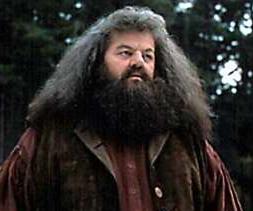 Rubeus Hagrid Original And Limited Edition Art
