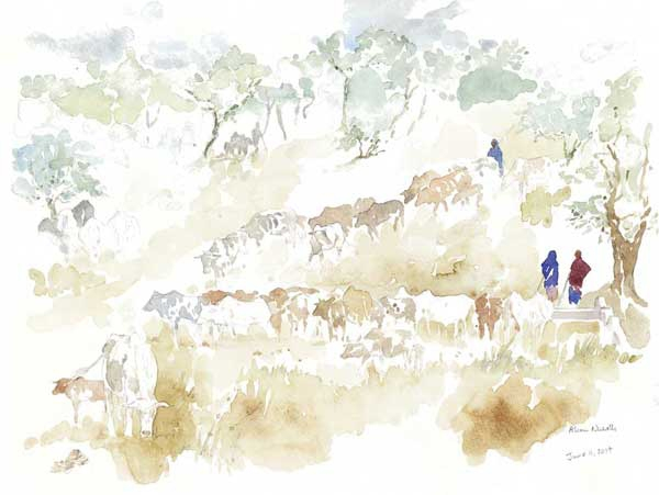 "Watering the Cattle, field sketch 11x14"" by Alison Nicholls"