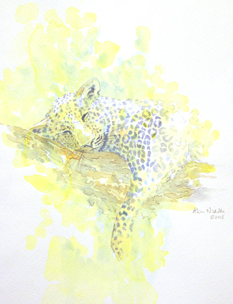 Leopard watercolor by Alison Nicholls