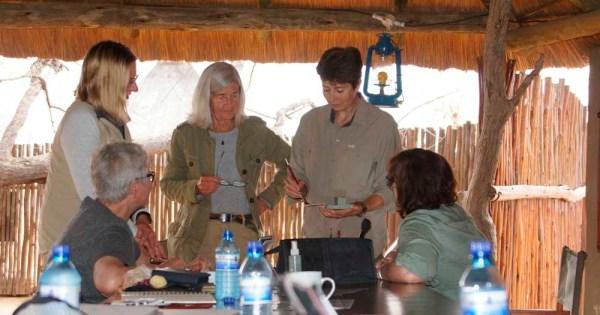 Alison Nicholls Africa Geographic Art Safari 2016