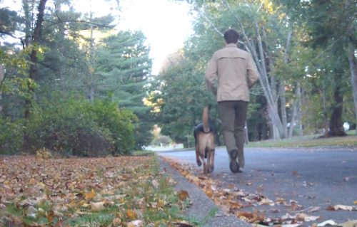 Alison Nicholls walking her dog, Chase.