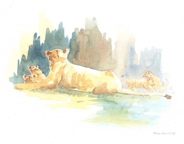 Lioness and Cubs Field Sketch by Alison Nicholls ©2016