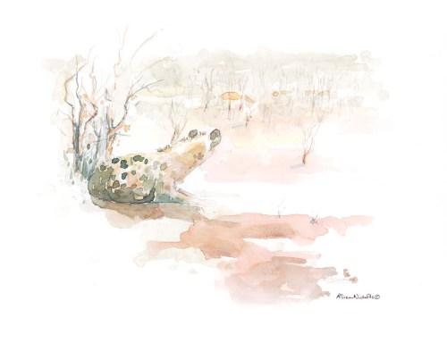Spotted Hyena watching Impala by Alison Nicholls