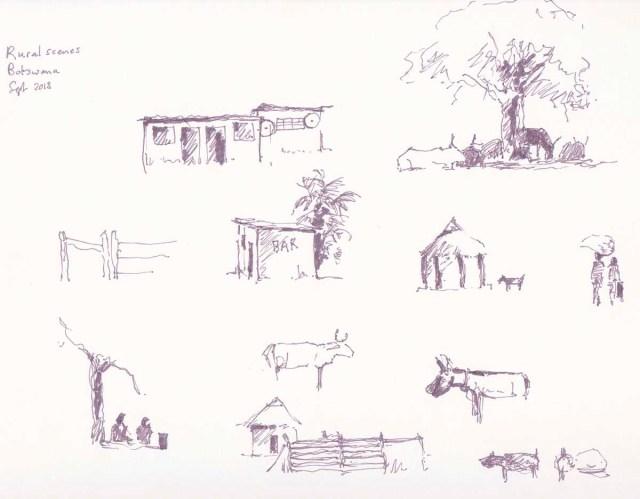 Rural village scenes sketched in pen in Botswana by Alison Nicholls