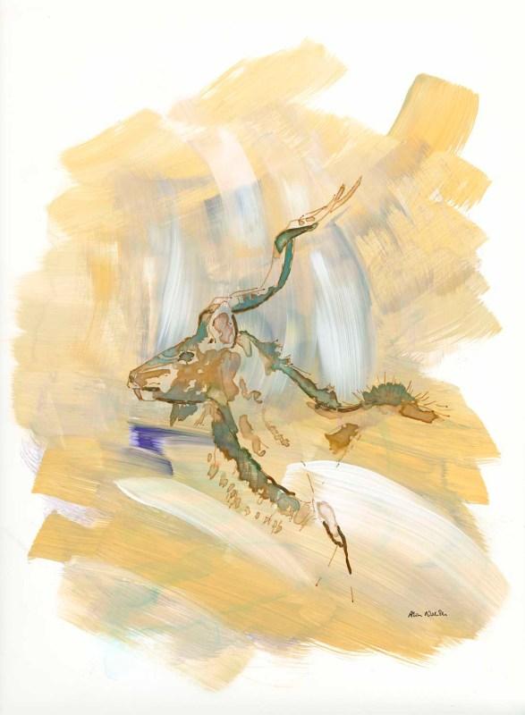 Kudu Bull sketch by Alison Nicholls