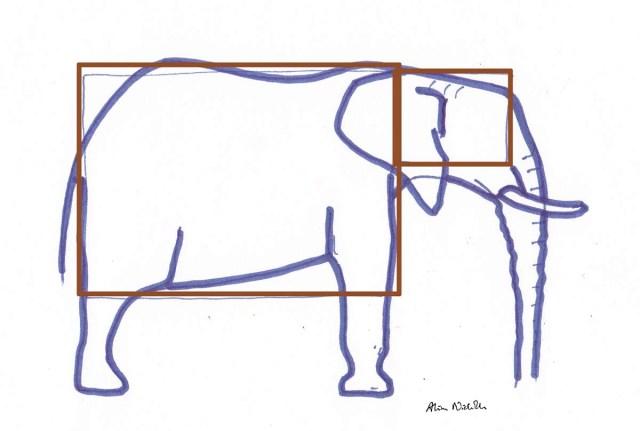 How I start an elephant sketch by Alison Nicholls