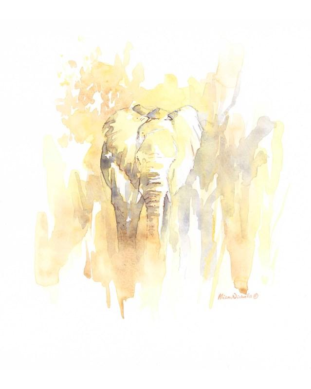 Sunlit Elephant by Alison Nicholls