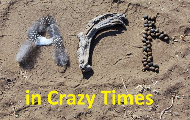 Art in Crazy Times - Alison Nicholls