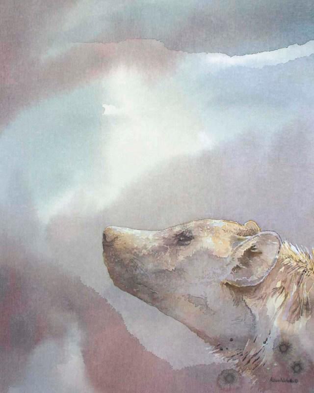 Spotted-Hyena-Night-Scent-Alison-Nicholls