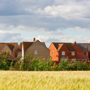 Houses in sun