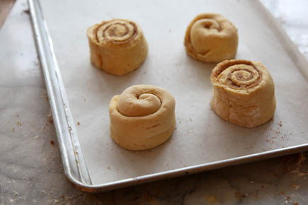 Unbaked Cinnamon Rolls on Sheet Pan | Artisan Bread in 5 Minutes a Day
