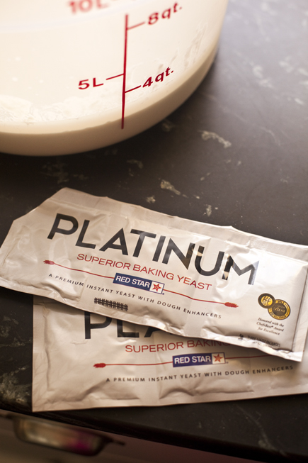 Platinum Yeast | Breadin5