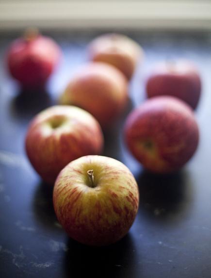 Apple Challah | Breadin5 17