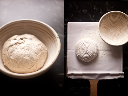 Super Peel | Breadin5 02