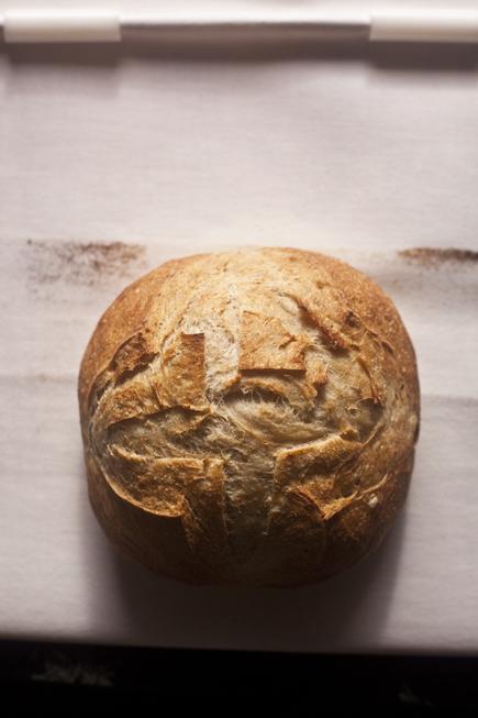 Super Peel | Breadin5 08