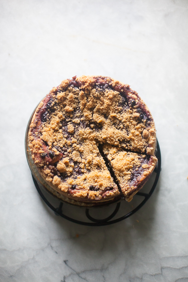 Yeasted Blueberry Coffee Cake | Artisan Bread in Five Minutes a Day