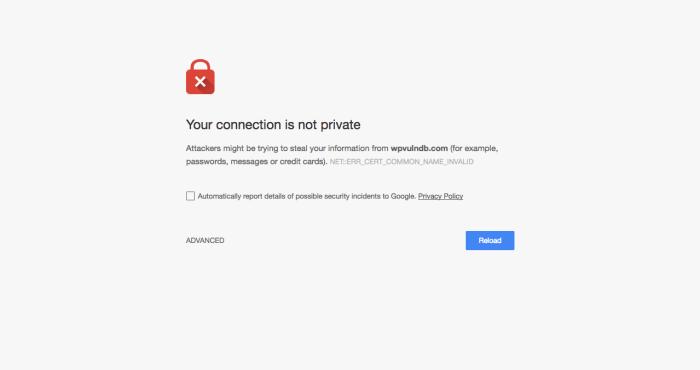 privacy-error