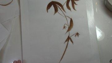 Bamboo Shoot Art