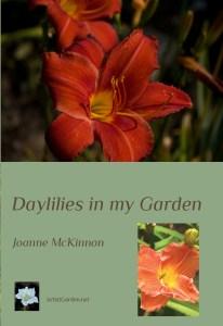 Book 1 version 4