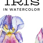 how to paint iris in watercolor