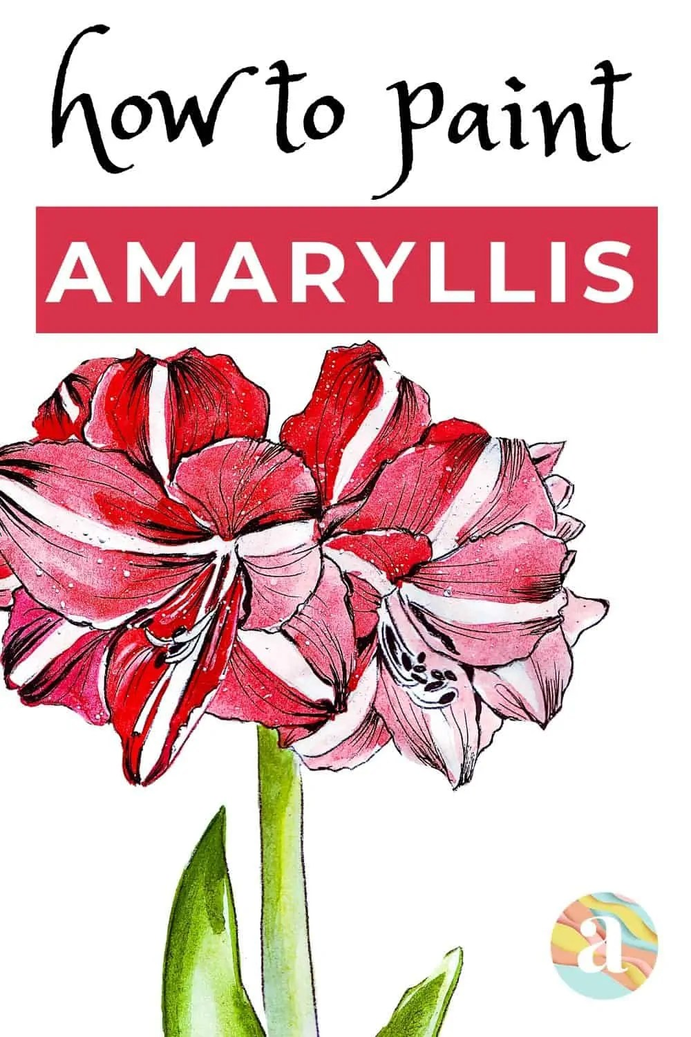 how to paint amaryllis in watercolor