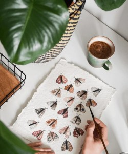 watercolor moth painting