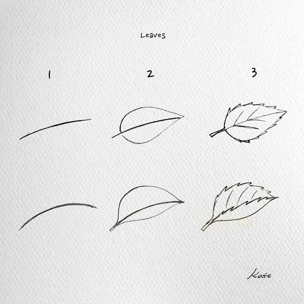 How to draw flowers for beginners? 95