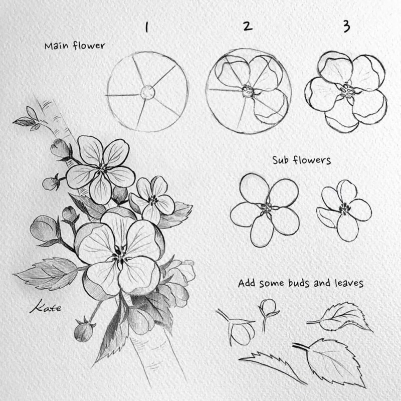 How to draw flowers for beginners? 87